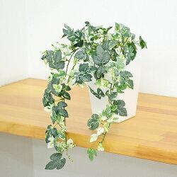 【送料無料】人工観葉植物 アイビー スクエア陶器鉢 光触媒加工