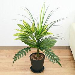 【送料無料】人工観葉植物 寄せ植え 6号ブラックセラート鉢