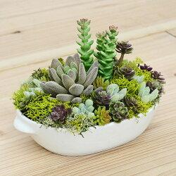 【送料無料】人工多肉植物 寄せ植え 皿形陶器