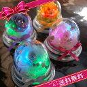 楽天1位受賞!プチギフトとして大人気♪カラーは6色→ピンク/ブルー/パープル/レッド/オレンジ/...