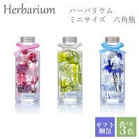 ハーバリウム 母の日 誕生日 ギフト プレゼント ミニサイズ 六角瓶 全3色