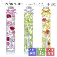 全3色からお好きに選べる1本入りギフトボックスセット ハーバリウム 母の日 誕生日 ギフト プレゼント ロングボトル 丸瓶 千日紅