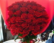 赤薔薇50本の花束,生花,花束,赤バラ,ギフト,プレゼント,プロポーズ,求婚,告白,お誕生日,パーティ,還暦,お祝い,豪華,新宿,四谷,花屋,シャムロック,楽天市場