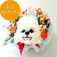【送料無料・あす楽】母の日に!!ポメラニアン犬のアニマルフラワーアレンジメントまるでぬいぐるみみたい☆ふわふわでキュンとしちゃう♪かわいい生花カーネーションギフト