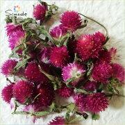 フラワー センニチコウ ピンク色 バリウム スワッグ