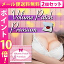【メール便送料無料★P10倍☆2個セット】Volume Patch P...