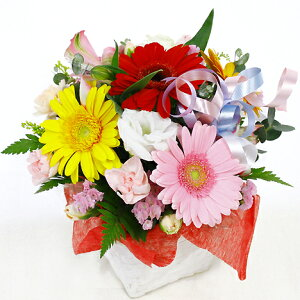アレンジラウンドミックスあす楽送料無料お花ギフト贈る誕生日敬老お供え