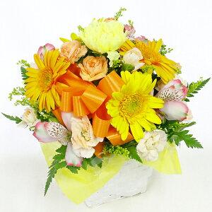 アレンジ・ラウンド黄オレンジあす楽送料無料お花ギフト贈る誕生日敬老お供え