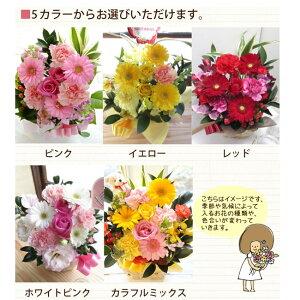 Flower Kitchen JIYUGAOKA:選べる5カラーの説明