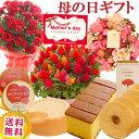 \早割/母の日 プレゼント 花 ギフト 選べる9種類 選べる花鉢&リースとスイーツのセット母の日ギフ