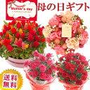 母の日 プレゼント ギフト 選べる花鉢&リース母の月 カーネーション アジサイ ケイトウ リースご注