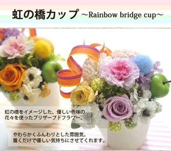 虹の橋カップ