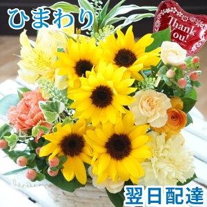 旬花ピック付きアレンジメント-ひまわり