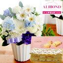 【あす楽】お供え花とスイーツのセット旬のおまかせお供えアレン