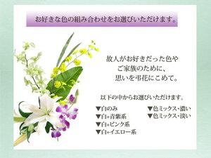 旬のお供え+淡墨の桜