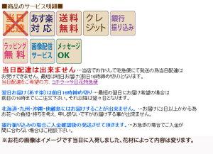 【送料無料】ラウンドブーケピンク3675円誕生日・歓迎・退職・歓送迎・還暦祝い・結婚祝い・恋人の日
