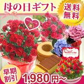 【送料無料】母の日選べる♪花鉢ギフト
