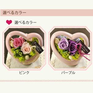 選べるカラー・ピンク・パープル【送料無料】