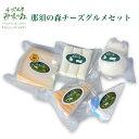 チーズ工房 那須の森 チーズグルメセット [栃木県産品 那須塩原市]FN0C7
