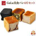 楽天ランキング1位 高級美食パンGaLa 4斤セット 【鳥取県米子市】 FN0CW