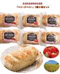 とちぎが生んだ美味しい手づくりパン<低温熟成植物性乳酸菌シリーズ ベリーズ ベリー3種6個セット>[栃木県産品 足利市]FN01K