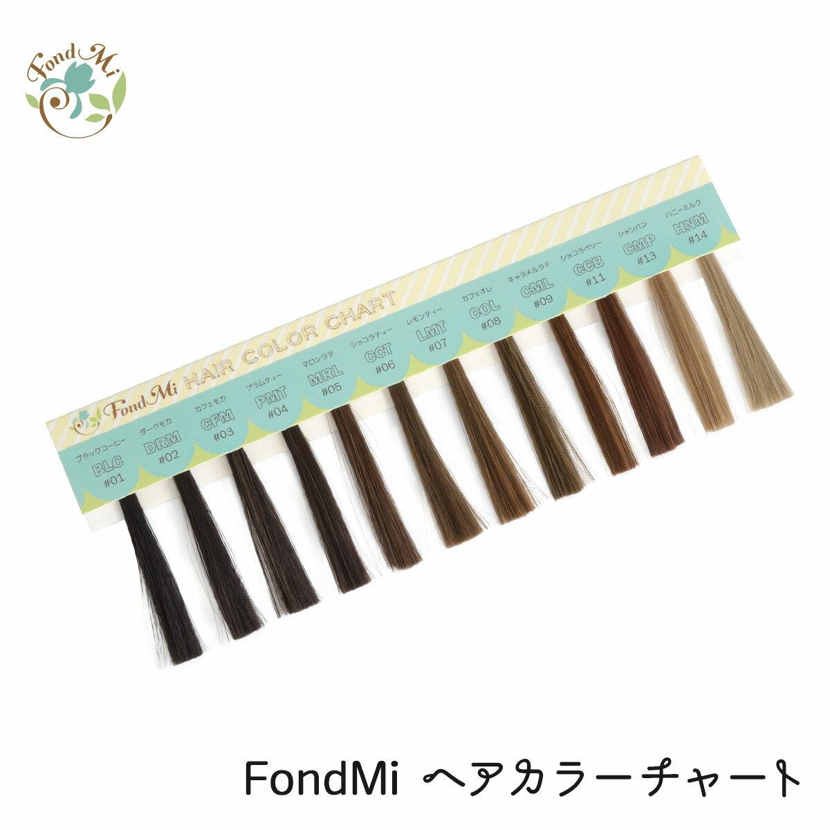 FondMi ヘアカラーチャート DM便送料無料 全12色 ウィッグ、エクステ用カラーサンプル カラー見本 フォンドミィ