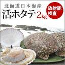 お待たせしました!放射能測定した安全な日本海の活ホタテ2kg