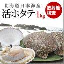 北海道寿都産お待たせしました!日本海の活ホタテ1kg 02P01Sep13