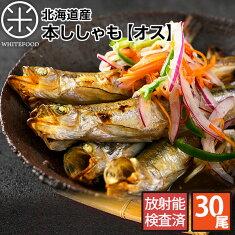 【生干し昆布干物シリーズ】
