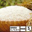 白米 玄米 無洗米 5kg 送料無料 宮崎県産 無農薬米 ヒノヒカリ 放射能検査済み