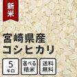白米 玄米 無洗米 新米 5kg 送料無料 宮崎県産コシヒカリ 放射能検査済み
