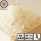 【定期購入】【新米・送料無料】北海道産ホワイトライス 減農薬米CL(5kg) 白米/玄米/無洗米 (残留農薬検査済み)