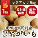 北海道ホクホクでおいしいじゃがいも9kg 新じゃがいも採れたて配送♪【送料無料】