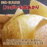 【訳あり送料無料(一部地域除く)】北海道じゃがいも北あかり(サイズ等指定なし10kg)※説明書きを十分ご覧の上ご注文ください