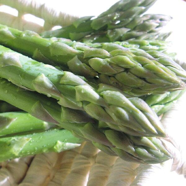 (一部地域除く)  数量 訳あり  露地栽培 グリ−ンアスパラガス(S〜L混1.5kg)※パ−プルアスパラ混合となる場合ありま