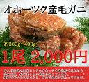 【10尾以上で送料無料!】北海道産毛ガニ(約420〜450g...