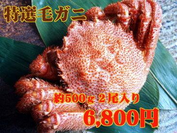 【特選】北海道産浜茹で毛ガニ(約500g×2尾)※2018年末予約も受付中
