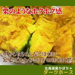 【訳あり】北海道産かぼちゃ「ダークホース」(約10kg)