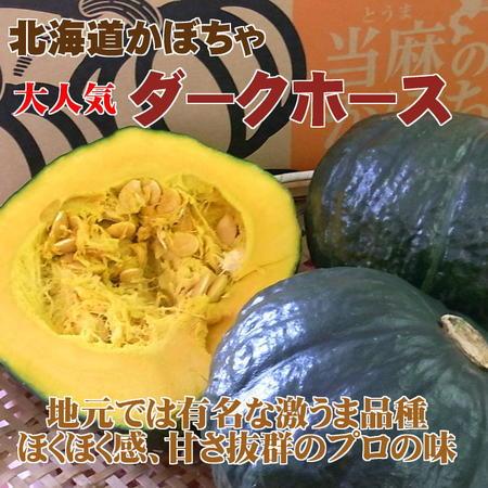 【大人気品種】北海道産かぼちゃ「ダークホース」(約10kg)※9月中旬~下旬頃発送予定(時期は前後)