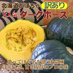 ほくほくのかぼちゃをどうぞ【訳あり】北海道産かぼちゃ「ダークホース」(約10kg)※9月中旬~...