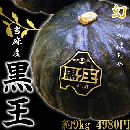 【幻の逸品】北海道当麻産かぼちゃ「黒王」(約9kg、4~7玉)