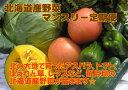 5月から10月の半年間。毎月北海道から旬の野菜が届きます☆【6回分送料無料】北海道産旬野菜マ...