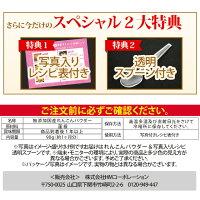 レンコンパウダー専用スプーン&レシピ付き(1ヶ月分)