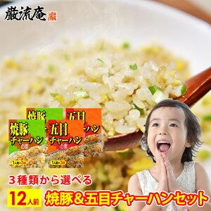 チャーハンの素 チャーハン の 素 もと 炒飯 焼豚 五目 12人前 中華 選べる セット 送料無料 備蓄食料 ポイント消化 おすすめ品