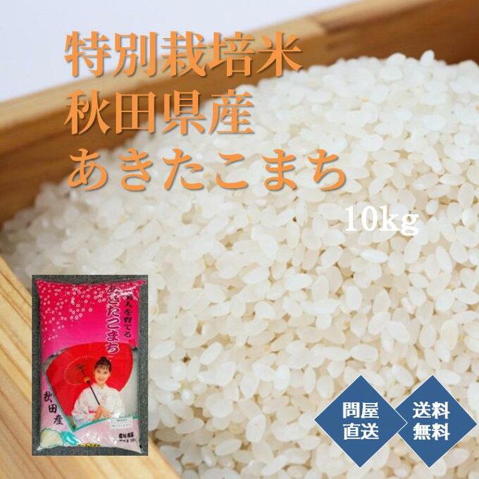 【送料無料】秋田県産 あきたこまち 特別栽培米 10kg   問屋直送...