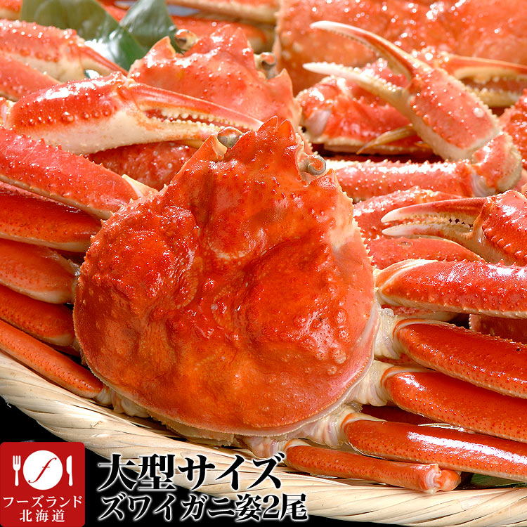 魚介類・水産加工品, カニ 500g290