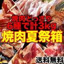 【送料無料】焼肉セット3kg分6品入り食べるぞ焼肉祭り[詰め合わせ/BBQ/バーベキュー/牛カルビや牛ハラミ等てんこ盛り](冷凍)