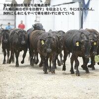 九州産黒毛和牛切り落とし1.2kg400g×3パック送料無料(北海道・沖縄除く)牛肉国産和牛ギフト父の日鍋お試し大容量切り落とし(さとふる総合ランキング27位に入りました。)*ふるさと納税ではありません。