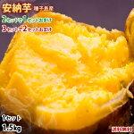 安納芋あんのういも送料無料秀品1.5kg種子島産2セットで1セット3セットで2セットおまけさつまいも芋