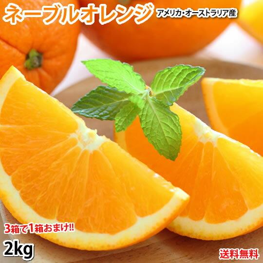 ネーブルオレンジ みかん 送料無料 2kg 3箱購入で1箱おまけ アメリカ オーストラリア産 オレンジ画像